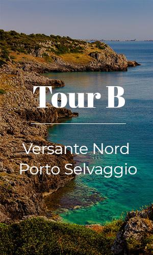 Tour B Versante Nord - Porto Selvaggio