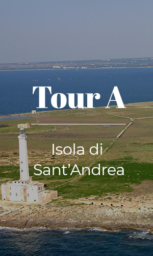 Tour A Isola di Sant'Andrea